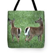 Does Tote Bag