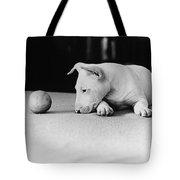 Dog And Ball Tote Bag