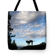 Dog And Sky Tote Bag