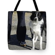 Dog And True Friendship 9 Tote Bag
