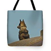 Dog At Point Bonita Tote Bag