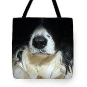 Dog Close Up Tote Bag