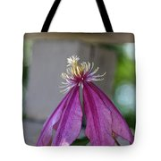 Dog Eared Clematis Tote Bag