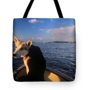 Dog In A Dingy At Put-in-bay Harbor Tote Bag