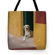 Dog In Colorful Mexican City Tote Bag