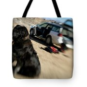 Dog In Front Of A Climbers Car Tote Bag