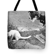 Dog Jumping On An Unsuspecting Kitten Tote Bag
