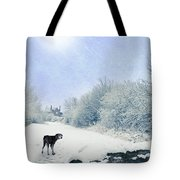 Dog Looking Back Tote Bag by Amanda Elwell