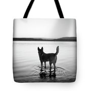 Dog Looking Over Abiquiu Reservior Tote Bag