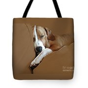 Dog - Mr. Oliver Snoozing Tote Bag