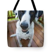 Dog On A Wooden Deck Tote Bag