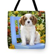 Dog On Blue Chair Tote Bag