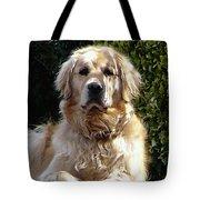Dog On Guard Tote Bag