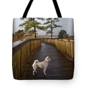 Shiba Inu On Path Tote Bag