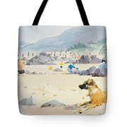 Dog On The Beach Woolacombe Tote Bag by Lucy Willis