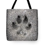 Dog Paw Print In Sand Tote Bag by Elena Elisseeva