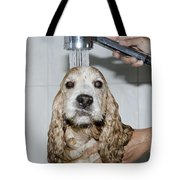 Dog Taking A Shower Tote Bag