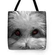 Coton Eyes Tote Bag