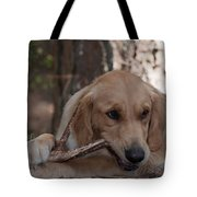 Doggy Heaven Tote Bag
