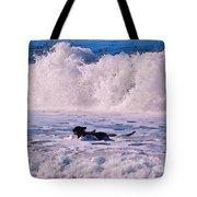 Dogs At Carmel California Beach Tote Bag