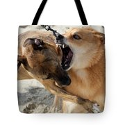 Dogs Fight On The Beach In Emerald Tote Bag