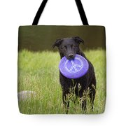 Dogs For Peace Too Tote Bag