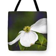 Dogwood Blossom - D001797 Tote Bag