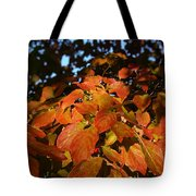 Dogwood In Autumn Colors Tote Bag