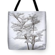 Dogwood In Snow Tote Bag