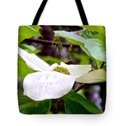 Dogwood In Yosemite Valley-2013 Tote Bag