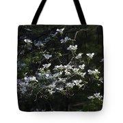 Dogwood Sunset Tote Bag