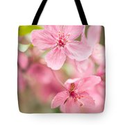 Dogwood Tree Bloom Close Up In Spring Tote Bag