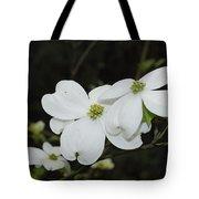 Dogwood Tree Blooms Tote Bag