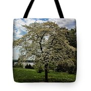 Dogwoods In Summer Tote Bag