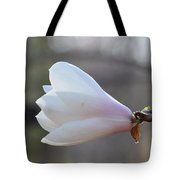 Dolly Horn Magnolia 2 Tote Bag