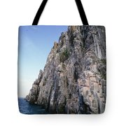 Dolomite Cliff With Guillemot Colony Tote Bag