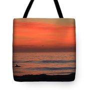 Dolphin At Cape Hatteras Tote Bag