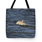 Dolphin At Sea Tote Bag