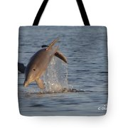 Dolphin I Mlo Tote Bag