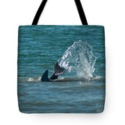 Dolphin Tale Tote Bag