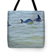 Dolphins 2 Tote Bag
