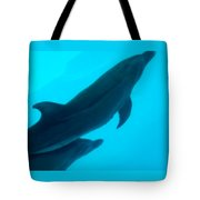Dolphins Photo Tote Bag