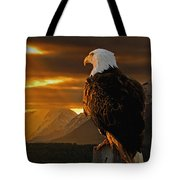 Domain Tote Bag by Ron Day