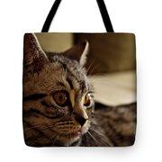 Domestic Cat Tote Bag