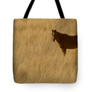 Domestic Horse   #5332 Tote Bag