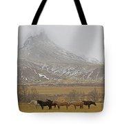 Domestic Horses   #2645 Tote Bag
