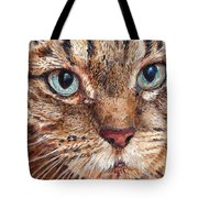 Domestic Tabby Cat Tote Bag