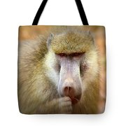 Dominant Male Baboon Tote Bag