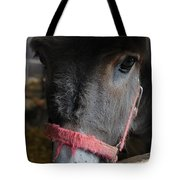 Donkey Behind Fence Tote Bag