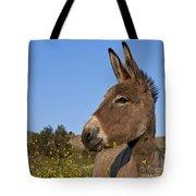 Donkey In Greece Tote Bag
